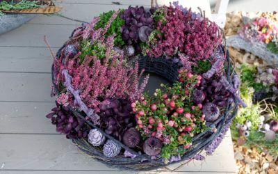 Toussaint et Chrysanthèmes à Woerth